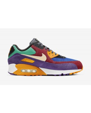 Nike Air Max 90 Viotech CD0917-600