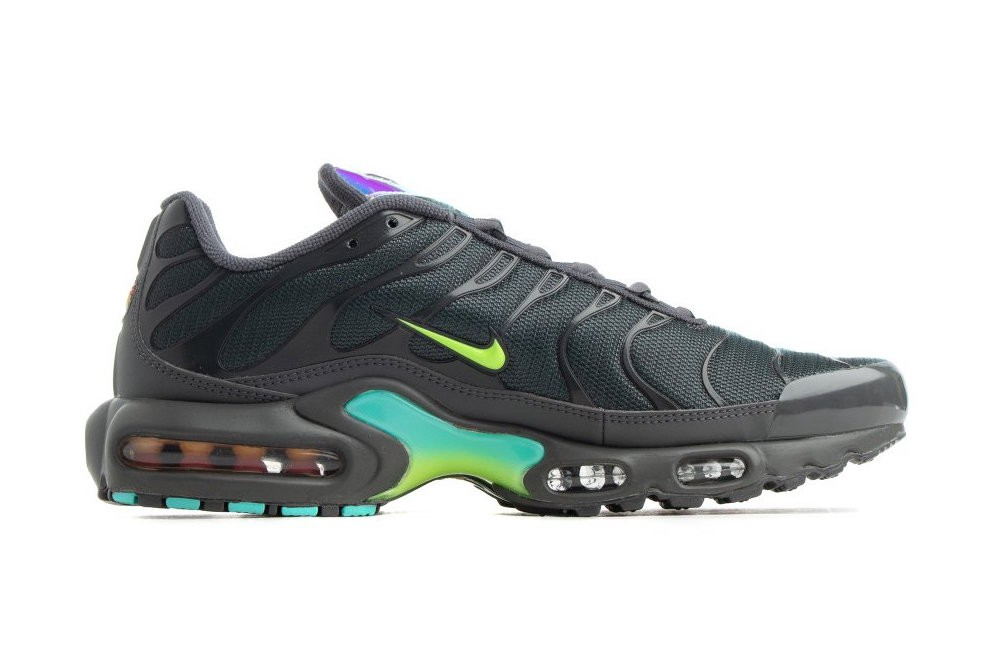 Nike Air Max Plus Grises CV1636-001